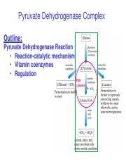 Lecture 22 Pyruvate Dehydrogenase Complex-BW