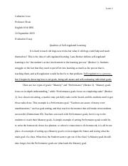 Evaluation Essay For  DEE2.docx