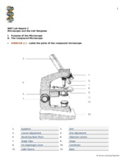 Lab Report 2 - Microscope and the Cell