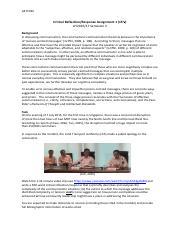 essay e commerce fashion statistics