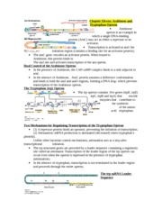 Chapter Eleven- Arabinose and Tryptophan Operon