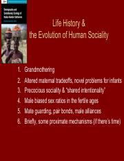 10-19 Life History and the Evolution of Human Sociality Hawkes (1).pdf