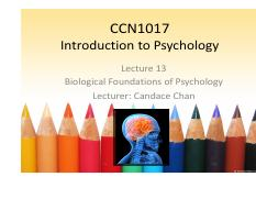 Chapter13 Biological Foundation of Psychology.pdf