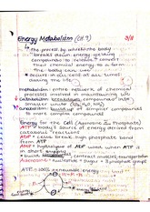 Chapter 9 energy metabolism