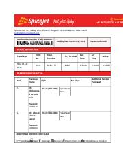 SpiceJet Ltd.docx