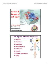 CH 1 - Cell injury I causes and targets [Compatibility Mode].pdf