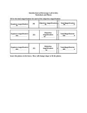 Microscope Lab Report Worksheet (4)