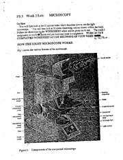 0. Week 2 Instructions for Use of Microscope