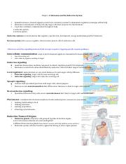 Chapter 45 Hormones and the Endocrine System