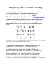 Karyotyping assignment.docx