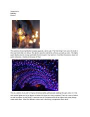 Image Journal 10.docx