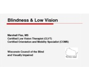 (4)- Visual Impairments