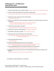 35 Cell Defense The Plasma Membrane Worksheet Answers ...