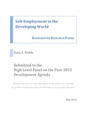 Fields_Self-Employment-in-the-Developing-World