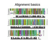 AlignmentBasics