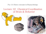 Chemical Coordination of Integrative Systems (Lecture 12)