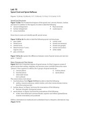 Printables Stress Portrait Of A Killer Worksheet stress portrait of a killer worksheet abitlikethis related for worksheet