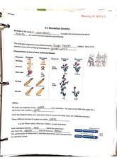 Notes on mendelian genetics