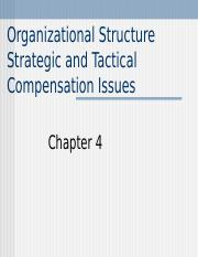 ch 4_Strategic and Tactical Compensation Issues.ppt