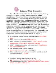 cells_and_organelles_new.answer_KEY - Final.doc