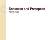 sensation and preperation pysc 2000