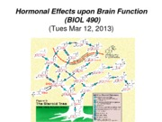 14 - Tues Mar 12 -  B490 Hormonal Effects upon Brain Function