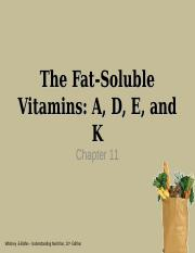 ntdt200chapter11fatsolvit-2.ppt