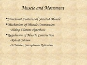 Powerpoint 12-Muscle
