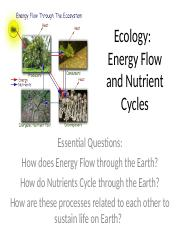 Energy Flow and Nutrient Cycles.ppt