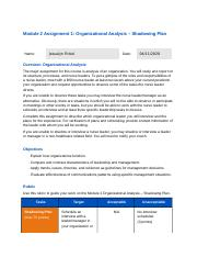 Module 2 Assignment 1_ Organizational Analysis – Shadowing Plan.docx