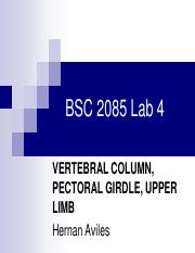 Lab4 Vertebral Column, Pectoral Girdle, Upper Limb.pdf