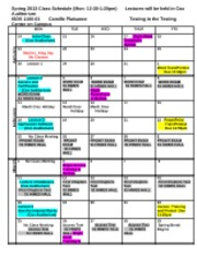 Schedule_ISDS_1100_Spring 2013_Monday_Section_rev