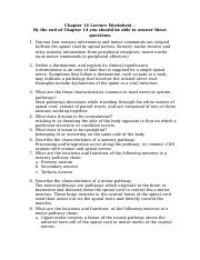 Chapter 14 Lecture Notes Worksheet SM