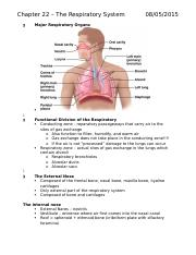 Chapter 22 – The Respiratory System.docx