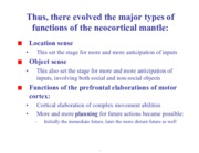 functions of the neocortical mantle notes