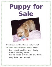 Lab 1-1 Puppy for Sale Flyer