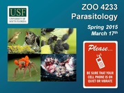 ZOO4233_March_17_Parasitic_Nematodes_II