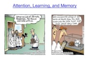 Attention, Learning & Memory