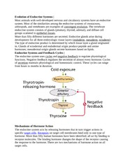 Evolution of Endocrine Systems