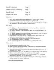 earthworm lab report