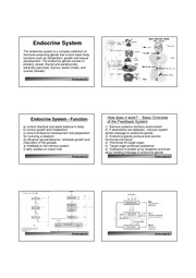 Lecture6 Endo System 1-400
