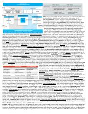 331 exam 1 cheat sheet.docx
