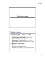 Section5_Carbohydrates_12