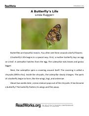 a_butterfly_s_life_540_passage_and_questions_0
