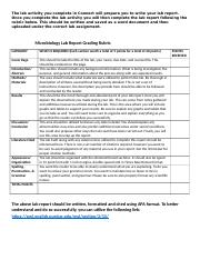 Microbiology Lab Report Grading Rubric- bio 299 (2).docx