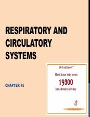 Lecture 19 - Respiratory and circulatory systems (1)
