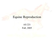 equinereprolect05