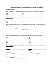 Answer Sheet for The Nervous System Workbook Activity (Weeks 13-15)