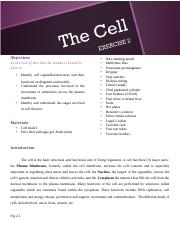Lab 2 The cell (2)