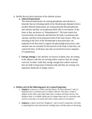 homeostasis study resources 5 pages essays lesson 4